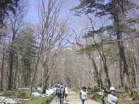 富山ブライダルエステアンジェ・ド・ポー参道脇の木々