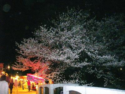 富山ブライダルエステアンジェ・ド・ポー2011.4.10松川べり桜1