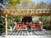 富山ブライダルエステアンジェ・ド・ポー鎌倉七福神弁財天