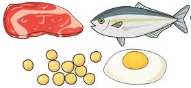 魚肉卵.JPG