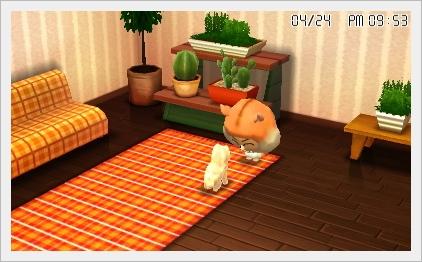 トモコレ犬2
