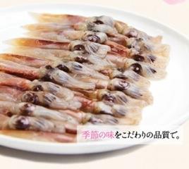 hotaruika_002_2.jpeg