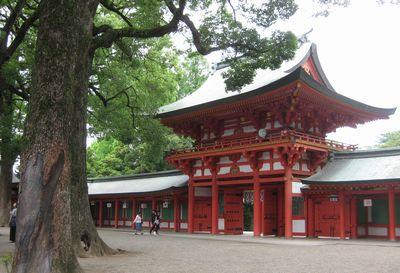 氷川神社6