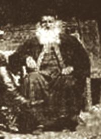 タラビッチ