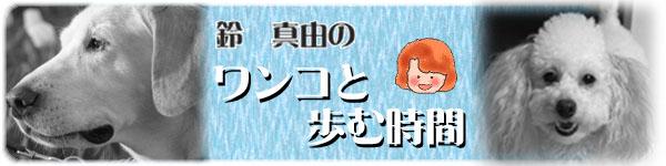 鈴 真由のワンコと歩む時間 トップ最新記事へ