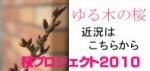 ゆる木桜の近況はコチラをクリック