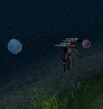 水面の月…かな?