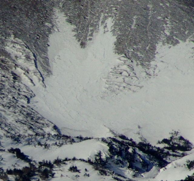 雪うさぎの頭