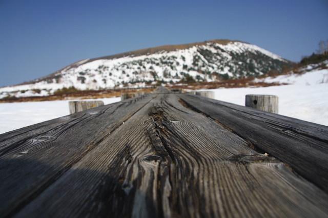 浄土平湿原の木道