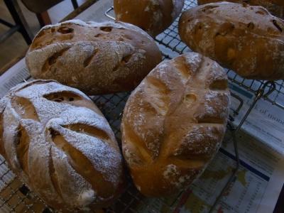 木の葉のくるみパン
