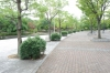 倉敷スポーツ公園08