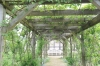 熊山英国庭園10