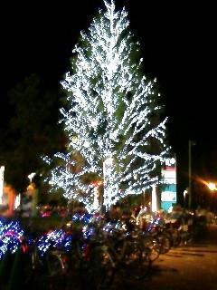 アリオ クリスマス2