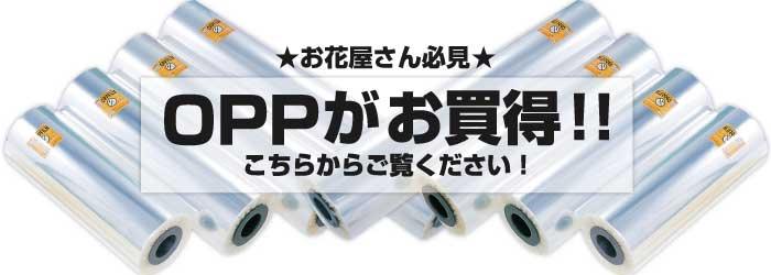激安OPPフィルムロール(セロハン)