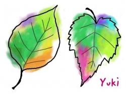 木の葉を塗ってみよう