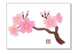 さくらの花を描こう