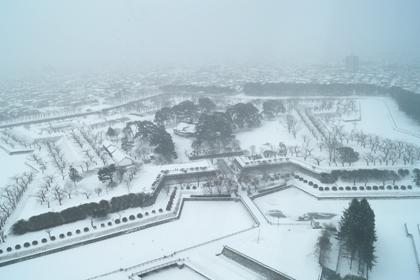 函館_2015_冬_11.jpg
