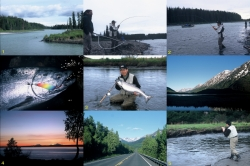 Alaska2002