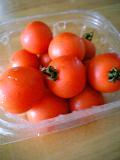 おじいちゃんのトマト