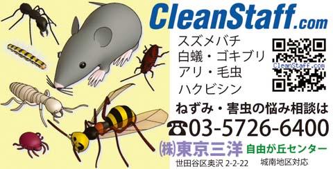 CleanStaff.com広告バナー
