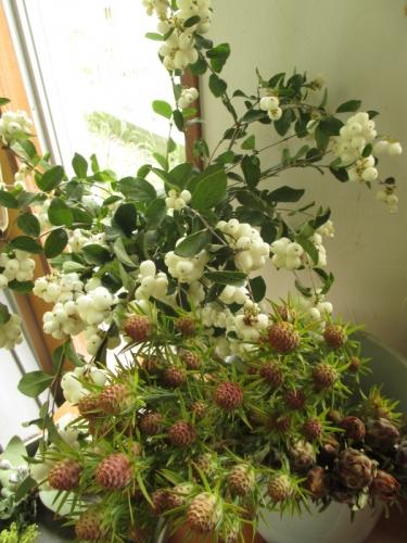 実物 花屋