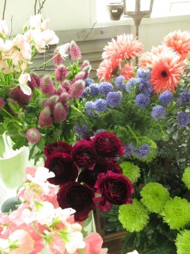 新春のお花
