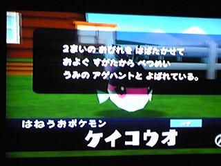 090128_000009_ed.jpg