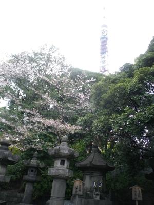 増上寺 徳川墓