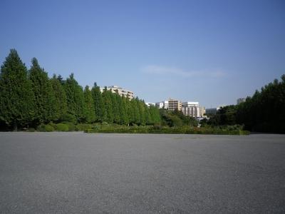 h25.8新宿御苑2