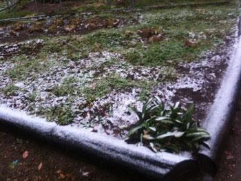 2012年12月9日初雪