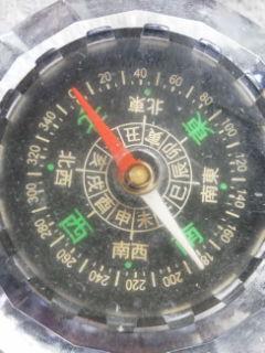 F1002407.jpg