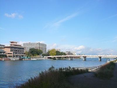 琵琶湖撮影11月12日 001 - コピー.jpg
