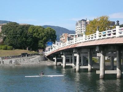 琵琶湖撮影11月12日 030.jpg