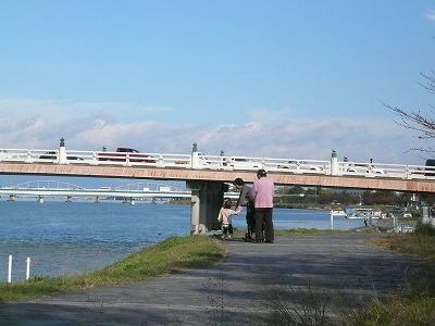 琵琶湖撮影11月12日 042.jpg
