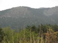 2014.5.5山