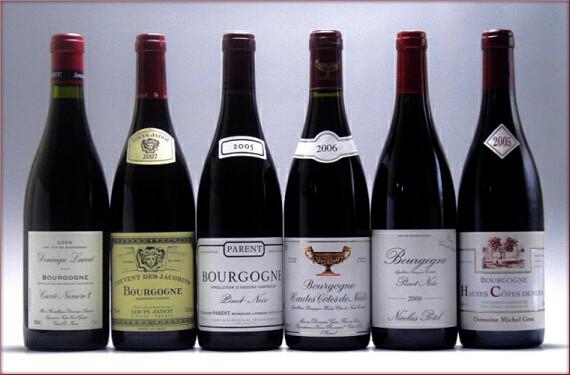 ブルゴーニ赤ワイン人気6生産者20091113