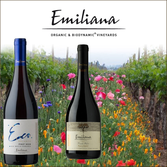 Emiliana-Vineyards
