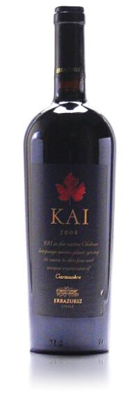 V-Errazuriz-KAI-2008