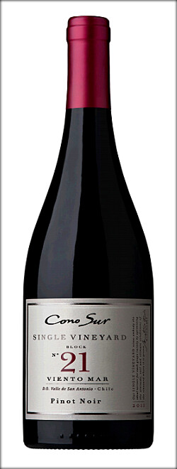 CONO SUR SINGLE VINEYARD PINOT NOIR 2011
