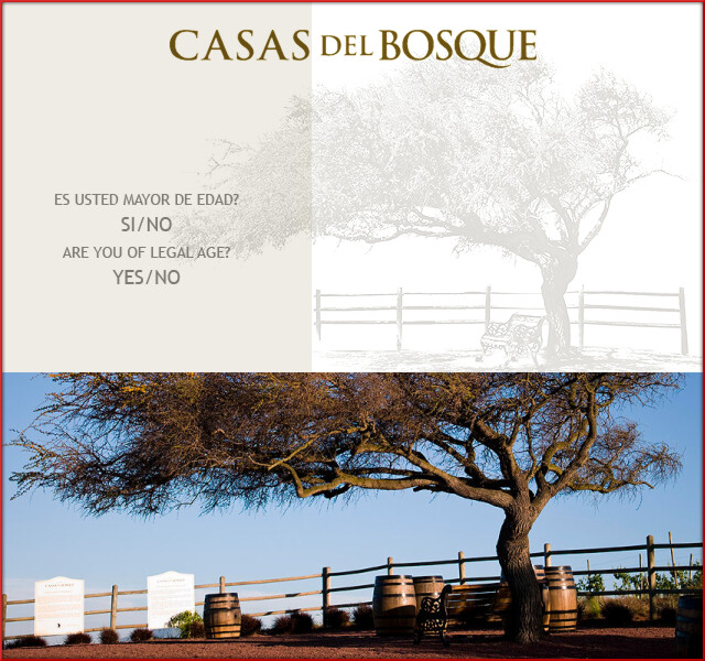 Casas del Bosque headder