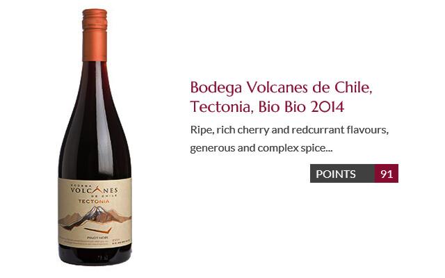 Bodega Volcanes Tectonia Bio Bio 2014 DC91p.jpg