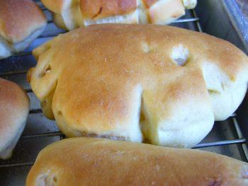 オレンジクリームパン1