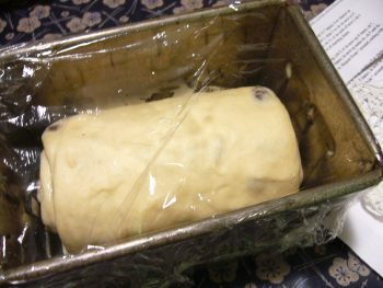 レーズンパン2時発酵前