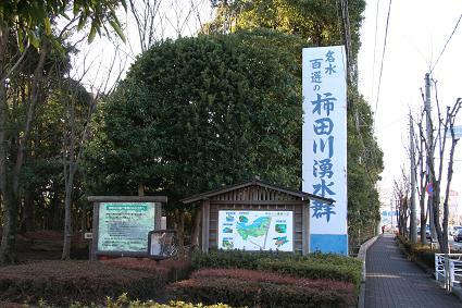 名水百選 柿田川湧水