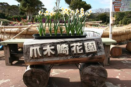 爪木崎花園