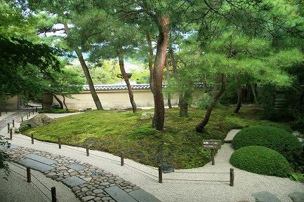 美術館庭園-8