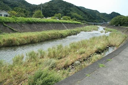 現在の稲生沢川です。