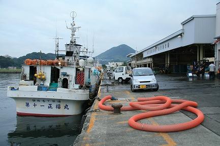 下田市魚市場-2