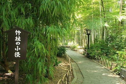 竹林の小径入口