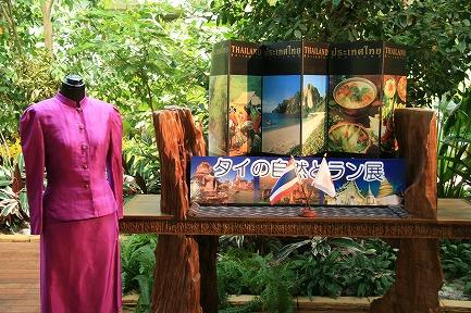 タイの自然とラン展